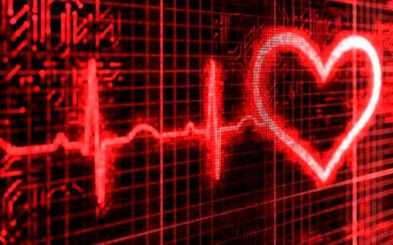 Científicos españoles colaboran para crear un 'corazón virtual'