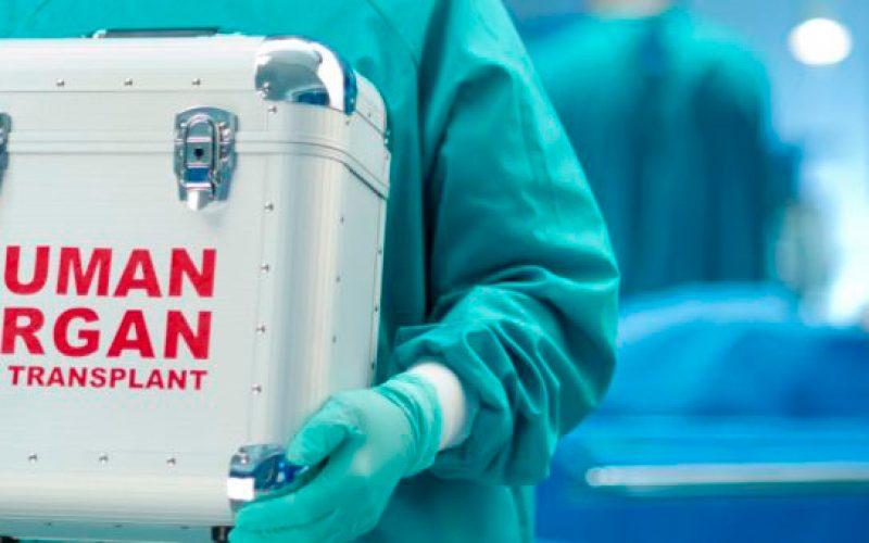 España, líder mundial en donación y trasplantes, vuelve a alcanzar un nuevo récord con 46,9 donantes p.m.p y 5.261 trasplantes